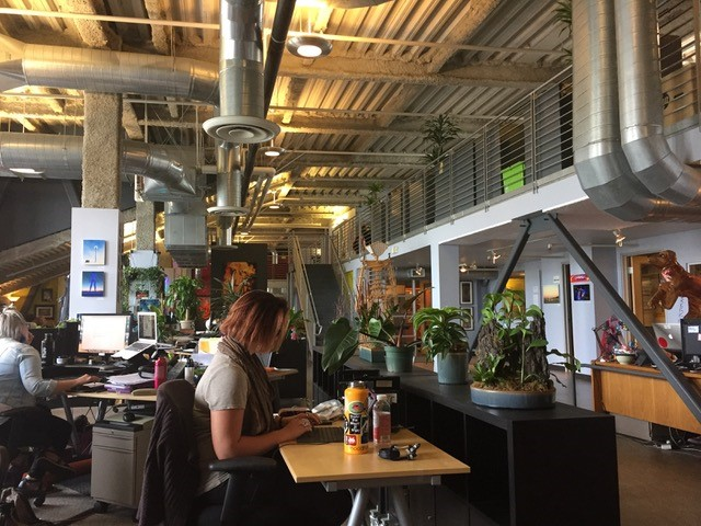 View of office space, plants and people sitting atdesks.